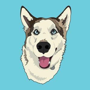 Husky Illustration Print 8inx10in